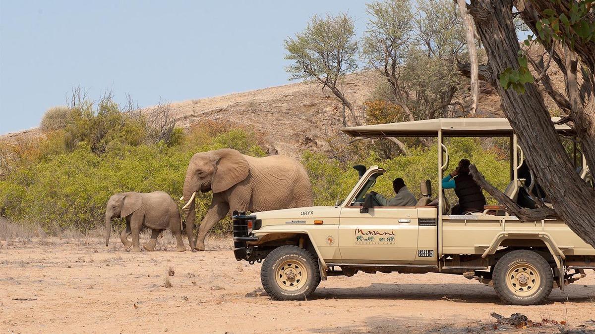 enfants du d sert rouge damarana safaris voyage namibie. Black Bedroom Furniture Sets. Home Design Ideas