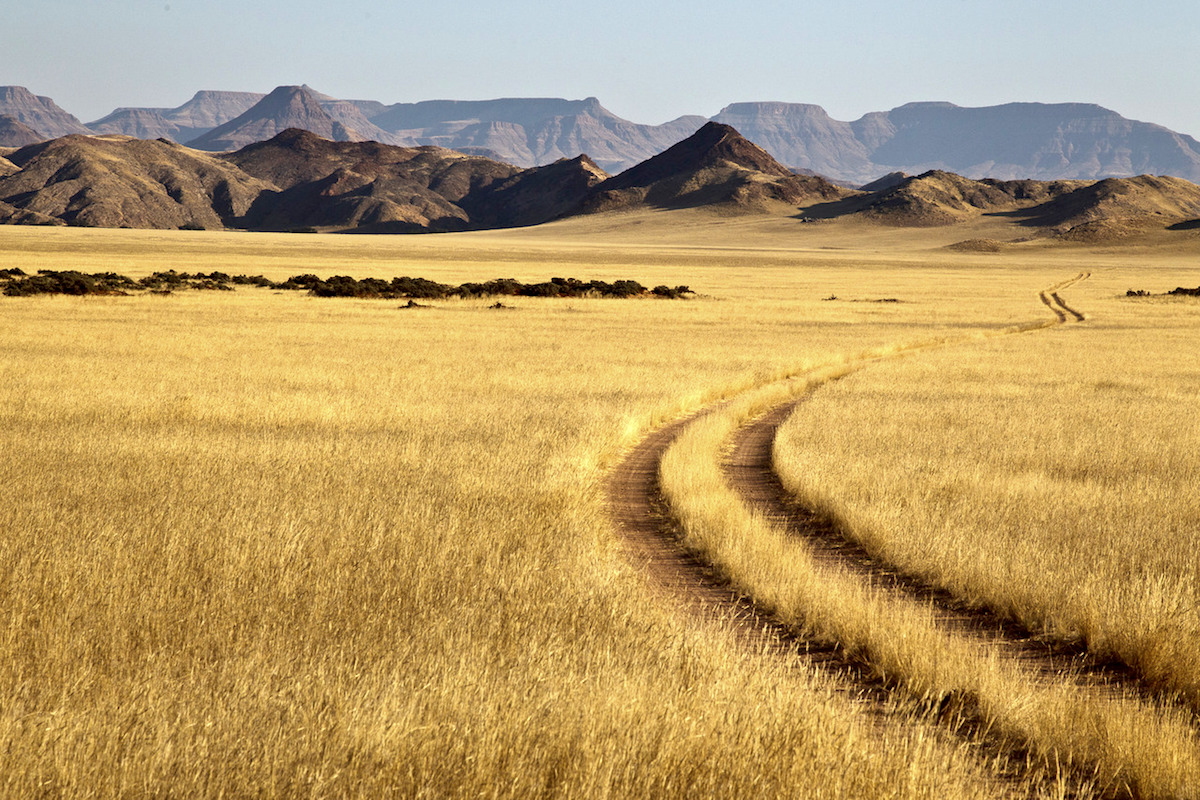 Impressions de voyage de François et sa famille, safari guidé Namibie, Juillet 2018