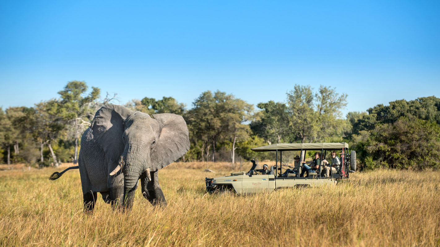 Impressions de voyage de Laurent & sa compagne – Auto Tour Botswana, Novembre 2017