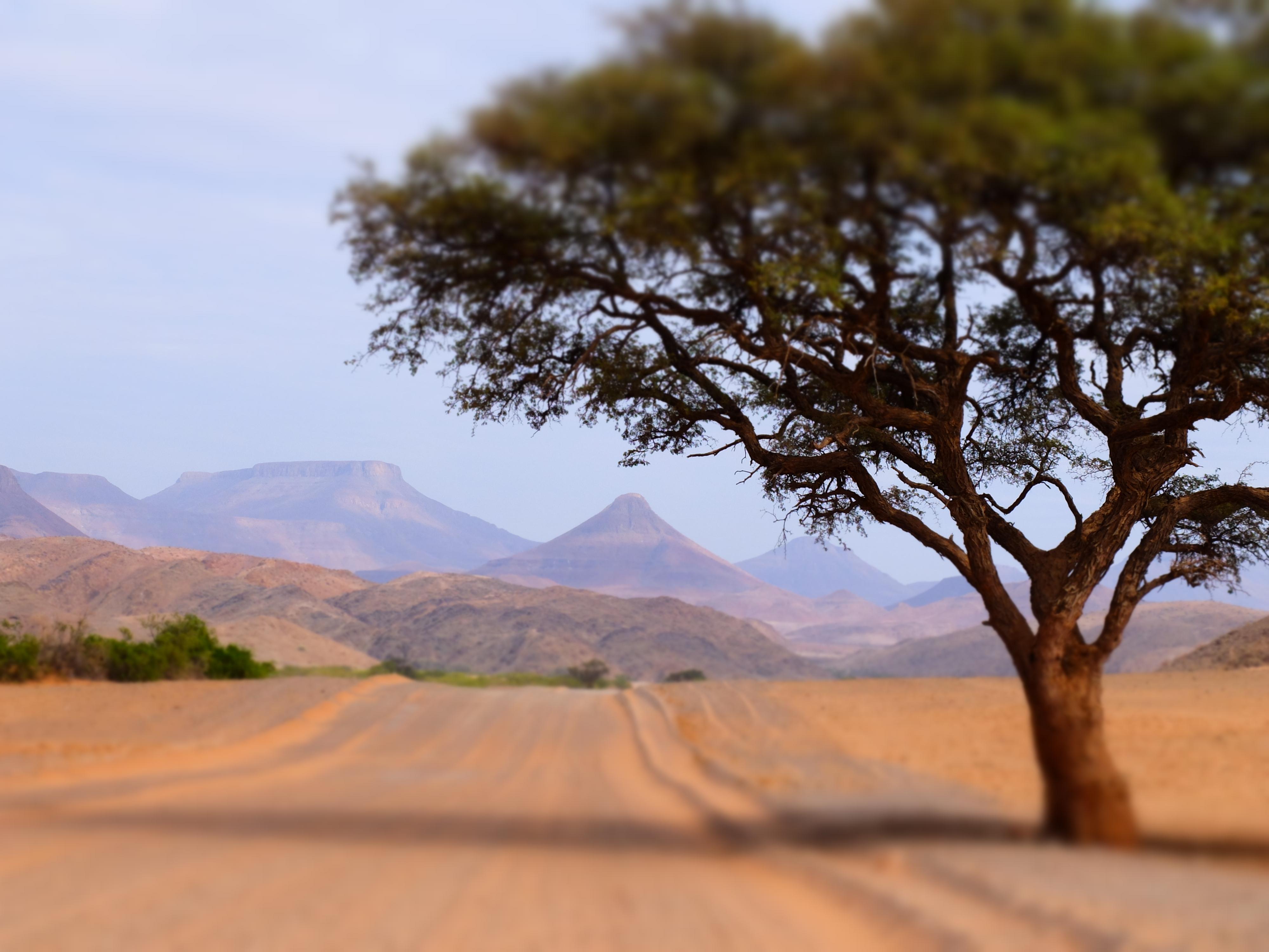 Impressions de voyage de Laurent & ses amis – Auto Tour Namibie, Mars 2018
