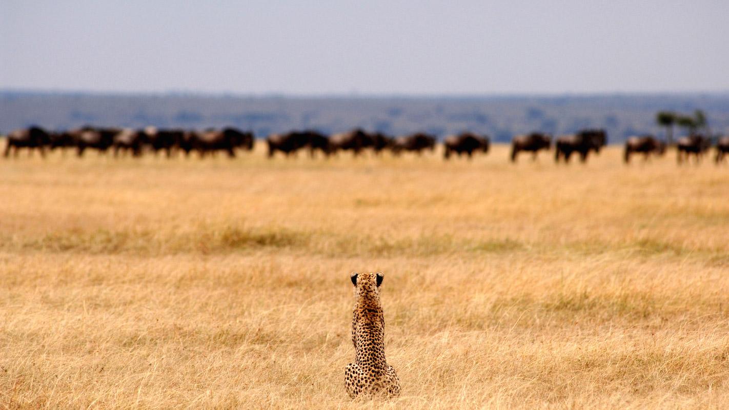 Impressions de voyage de Brigitte & ses amis, Auto tour, Namibie, Mai 2018