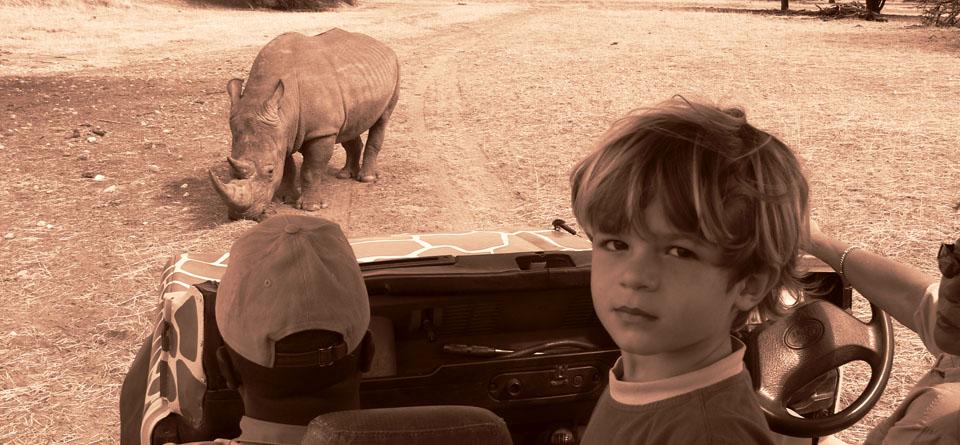 Impressions de Voyage de Fabrice et sa famille – Auto Tour Namibie, Botswana, Zimbabwe – Octobre 2014