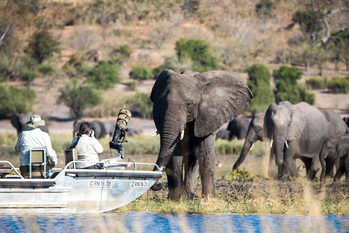 Impressions de voyage d'Annick & Pierre, Auto-tour Namibie, Botswana, Zimbabwe, Octobre 2018