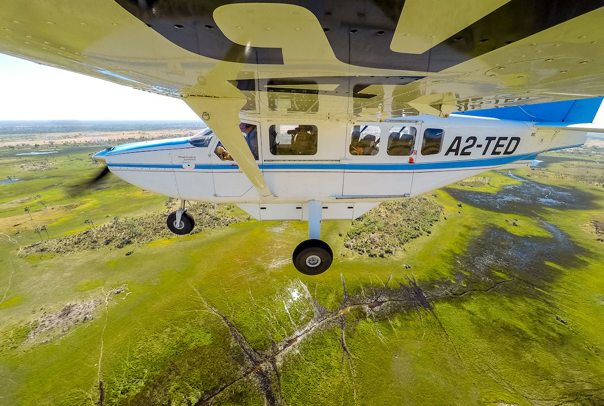 Impressions de voyage de Rémi et sa famille – safari Fly-in au Botswana, Aout 2016