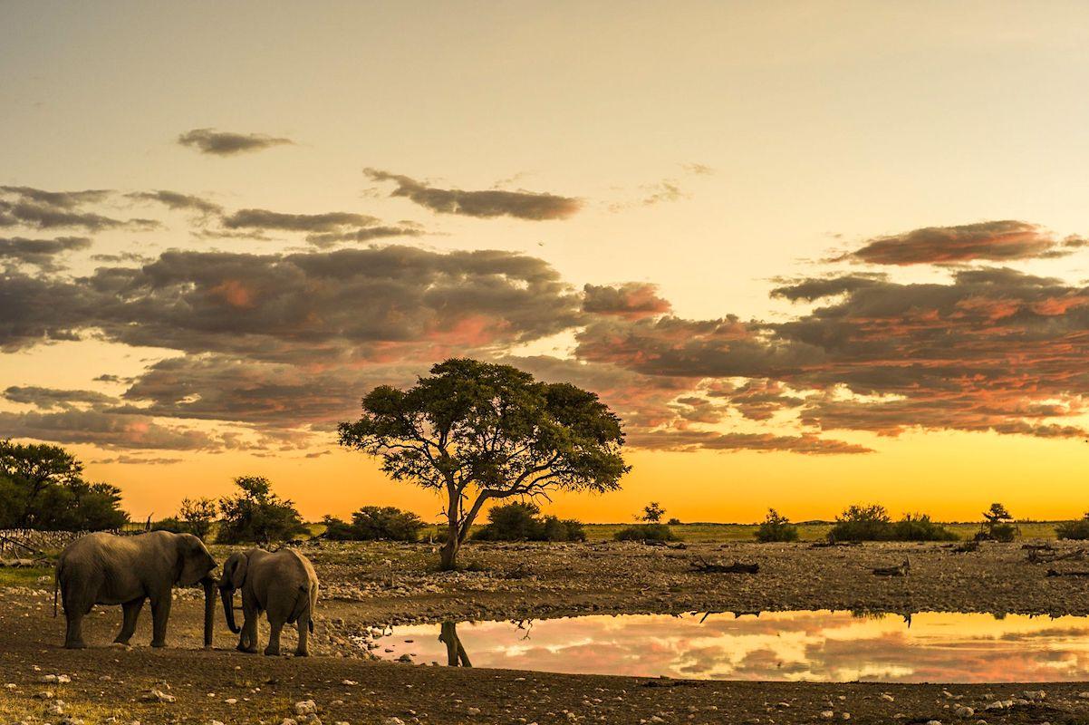 Impressions de voyage de Laurence et Roland, Auto-tour Namibie, Nov 2018