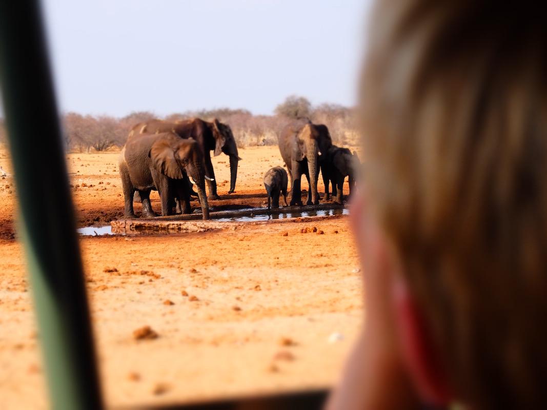Impressions de voyage de Sylvie & sa famille, Auto-tour Namibie – Octobre 2019