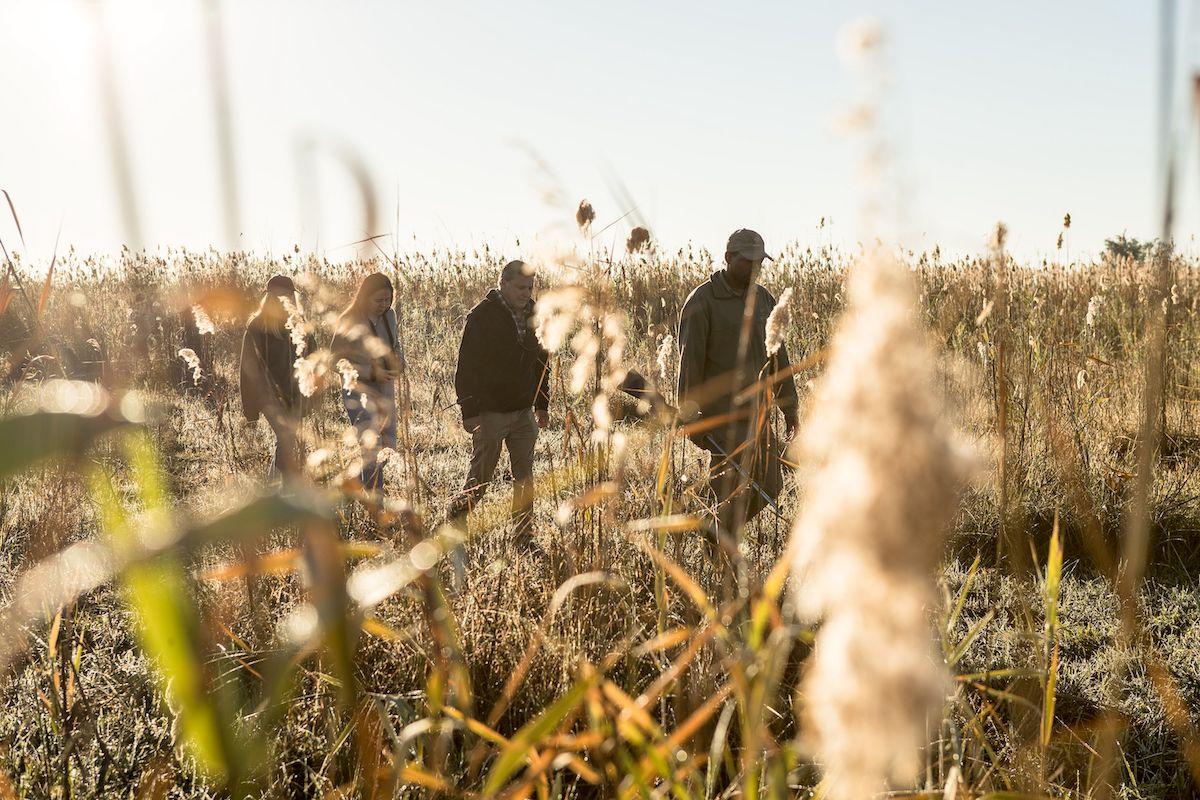 Impressions de voyage de Jean & ses amis, Auto-tour Namibie, Botswana, Zimbabwe – Novembre 2019