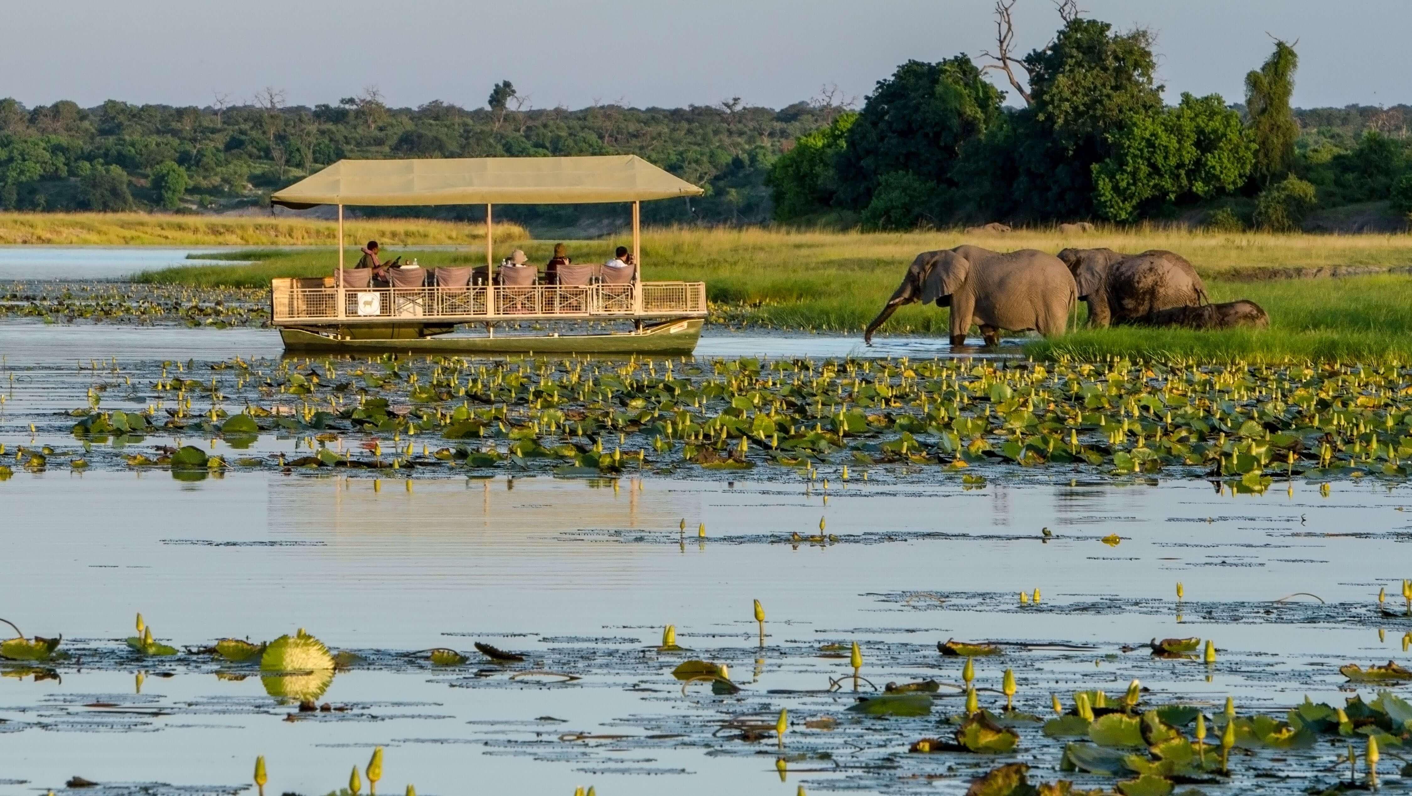 Impressions de voyage de Serge & Christine, Autotour Namibie, Botswana, Zimbabwe – Novembre 2019