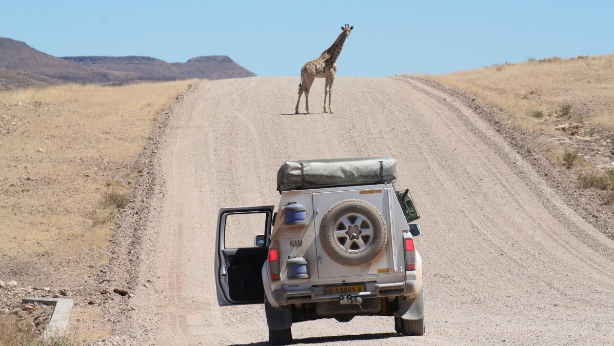 Impressions de voyage de Mathilde & Arnaud, Auto-tour & partie guidée sous toile, Namibie – Septembre 2019